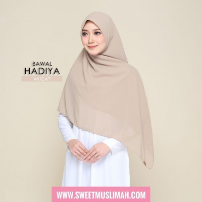 MS19 44 Hadiya - Wheat